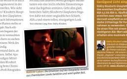 Pressestimmen zu der Glasplatten-Fotografie aus Köln